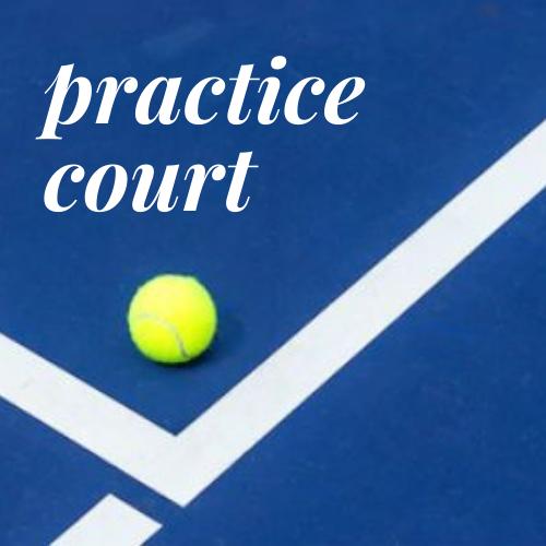 Practice Court